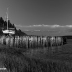 Deligent-River-NS---Wharf-and-sailboat-Wdr-1213_MG_7673