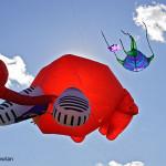 Dieppe-NB---Kite-festival---CUL-07--481-11387