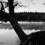 Hammond-Riv-NB-sunrise-on-lake--_MG_8653