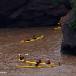 Hopewell-Cape-NB---Kayakers-Wdr-1457_38R4377