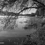 Newville-Lake-NS---Wide-view-of-lake-and-cottage---Wdr-1213_MG_7741