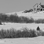 Old-Homestead---Wdr-1425_MG_1029