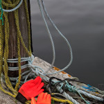 Peggy-s-Cove-NS--Flurescent-Gloves-Wdr-1171_MG_2358
