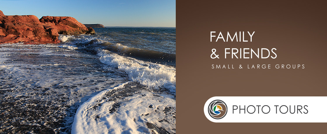 Photo Tours for Family and Friends